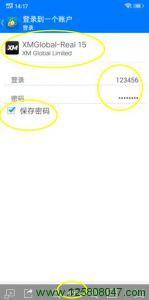 手机端mt4登录或增加账户步骤六